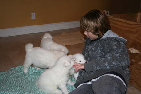 Jan. 10th .... Aiden under puppy attack