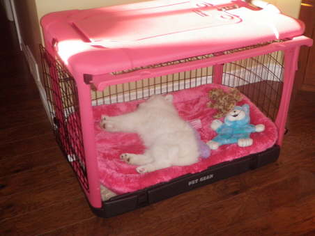 Looks like, Bella feels already home in your new princess castle ;-)